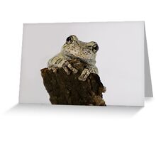 Adorable Smiling Tree Frog Greeting Card