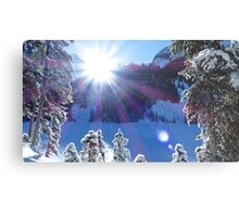 Cold Winter Sunlight Metal Print