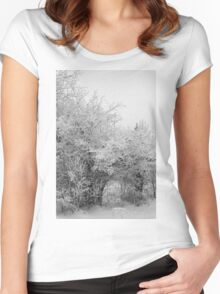 Frost Coated Trees Women's Fitted Scoop T-Shirt