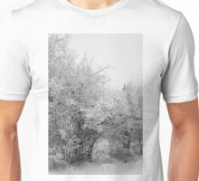 Frost Coated Trees Unisex T-Shirt