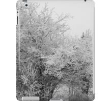 Frost Coated Trees iPad Case/Skin