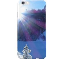 Cold Winter Sunlight iPhone Case/Skin