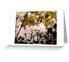 Tree Outlines Greeting Card