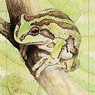 Pensive (Alpine tree frog - Litoria verreauxii alpina) by Laura Grogan