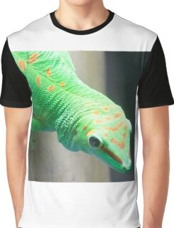 Gecko Relative Graphic T-Shirt