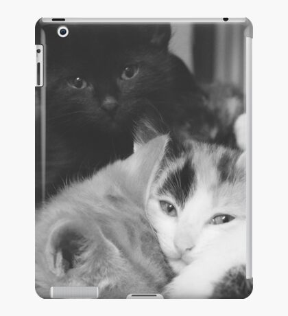 Pile of kittens (non-clothing products) iPad Case/Skin