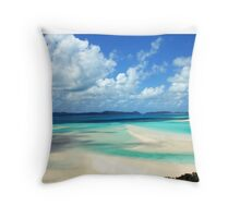 Beautiful one day.. perfect the next!  Throw Pillow