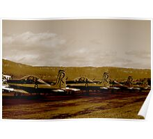 Wings over Illawarra sepia Poster