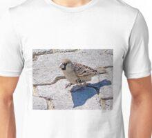 Sociable Weaver Unisex T-Shirt