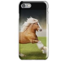 Gypsy Stallion 1 iPhone Case/Skin