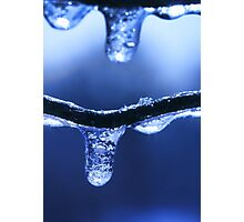 Ice drop Photographic Print