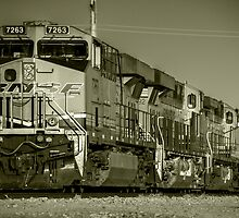 BNSF Freight  by Rob Hawkins