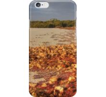 Coorong #6 iPhone Case/Skin