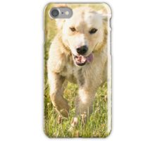 Fun in the sun (non-clothing products) iPhone Case/Skin
