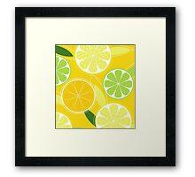 Yellow Citrus: Citrus fruit background vector Framed Print