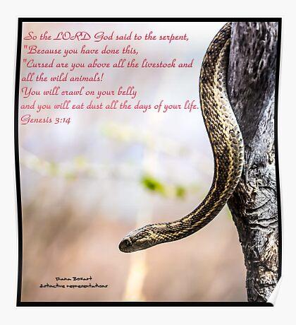 Bible Verse Genesis 3:14 Poster