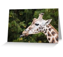 Cheeky Giraffe! Greeting Card