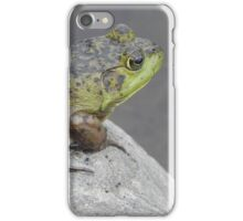 Sunbather iPhone Case/Skin