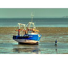 LILLEY G LO544  Photographic Print