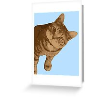 Portrait of cat Greeting Card