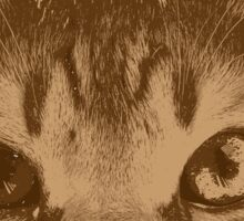 Portrait of cat _2 Sticker
