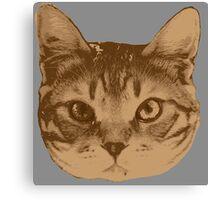 Portrait of cat _2 Canvas Print