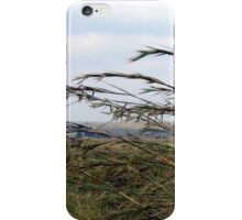 Grass grows in silence iPhone Case/Skin