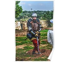 The Warrior On Guard Poster