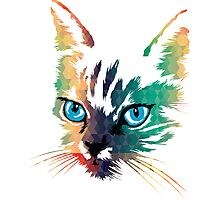 POP ART CAT Photographic Print