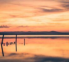 Serenity by yolanda