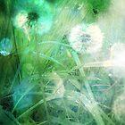 Dandy Rain by AllyNCoxon