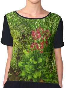Impressions of Gardens - a Miniature Spring Creek with a Red Primrose  Chiffon Top