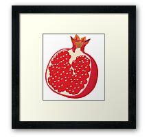 Pomegranate Vector Framed Print