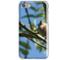 Watchful Wren iPhone Case/Skin