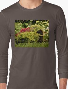 Black Squirrel Looking for Food Long Sleeve T-Shirt