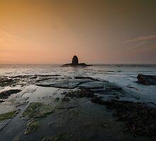 Saltwick Bay, Whitby by Stephen Smith