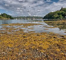 Crinan by Stephen Smith