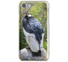 Adult Andean Condor on a Rock iPhone Case/Skin