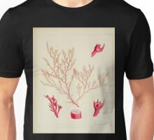 The botany of the Antarctic voyage of H M  discovery ships Erebus and Terror in the Years 1839 1843 Joseph Dalton Hooker V1 157 Unisex T-Shirt