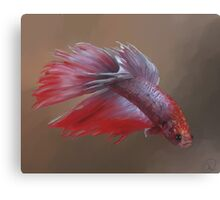 Sparky the Crowntail Canvas Print