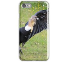 Andean Condor on Grass iPhone Case/Skin