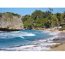 Island life Photographic Print