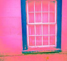 Pink Window by Judi FitzPatrick
