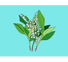 Lilly of the Valley Photographic Print