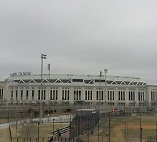 Yankee Stadium by Chris Moll