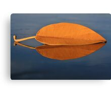 Fall leaf on the Kona Wall Canvas Print