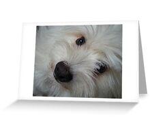 Emotional Support Dog(Landscape) Greeting Card