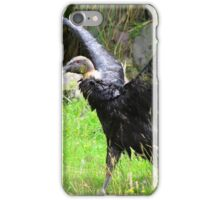 Female Andean Condor With Spread Wings iPhone Case/Skin