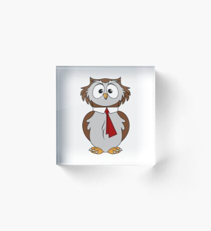 Owl Cartoon Acrylic Block