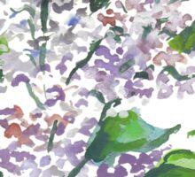 Lilac flowers Sticker